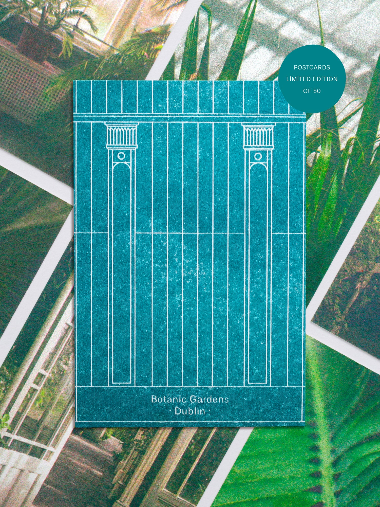 "Postcards featuring an illustration inspired by the architecture of the botanic gardens in Dublin with a label in the top right corner reading ""postcards, limited edition of 50"""