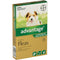 Advantage for Puppy/Small Dogs (Under 4kg)