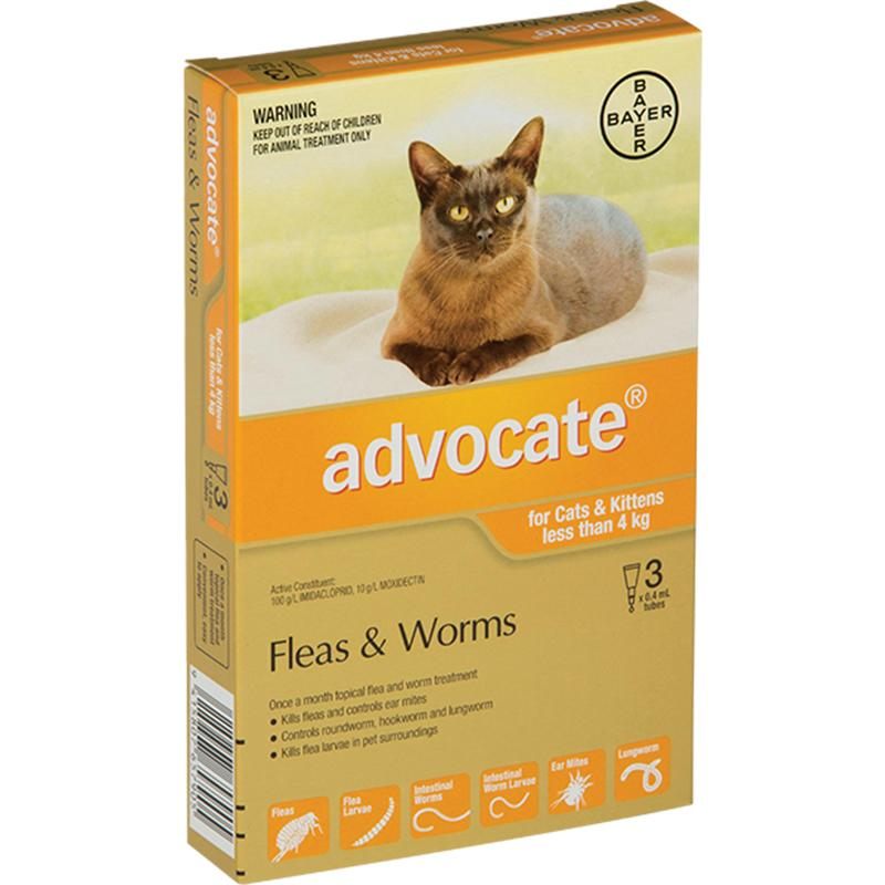 Advocate for Kitten/Small Cats (Under 4kg)