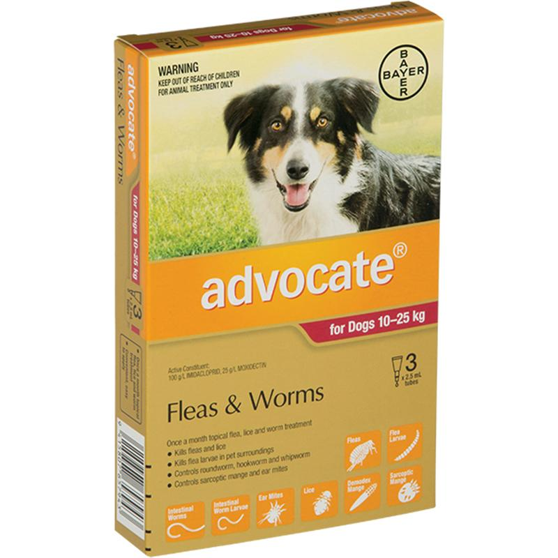 Advocate for Large Dogs (10-25kg)