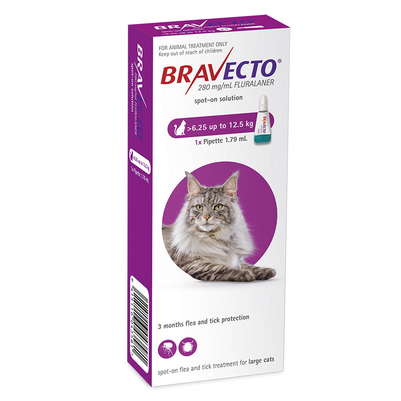 Bravecto Spot-On for Large Cats (6.25-12kg)
