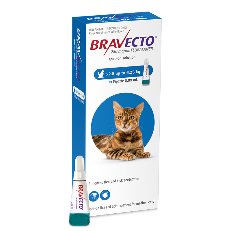 Bravecto Spot-On for Medium Cats (2.8-6.25kg)