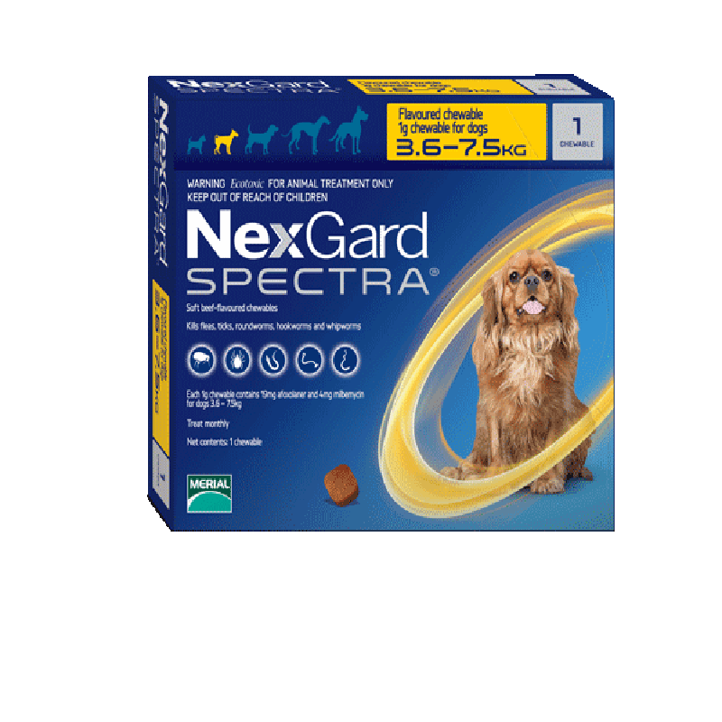 Nexgard Spectra for Small Dogs (3.6-7.5kg)