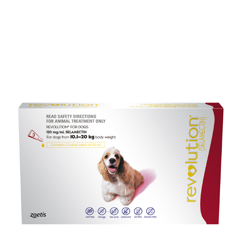 Revolution For Medium Dogs (10.1-20kg)