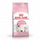 Royal Canin Kitten (Dry Food)