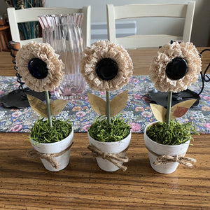 Mini Flower Pots (Set of3)