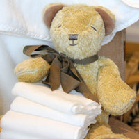 Baby Gift Organic Plush Toy Floppy Cubby the Teddy Bear