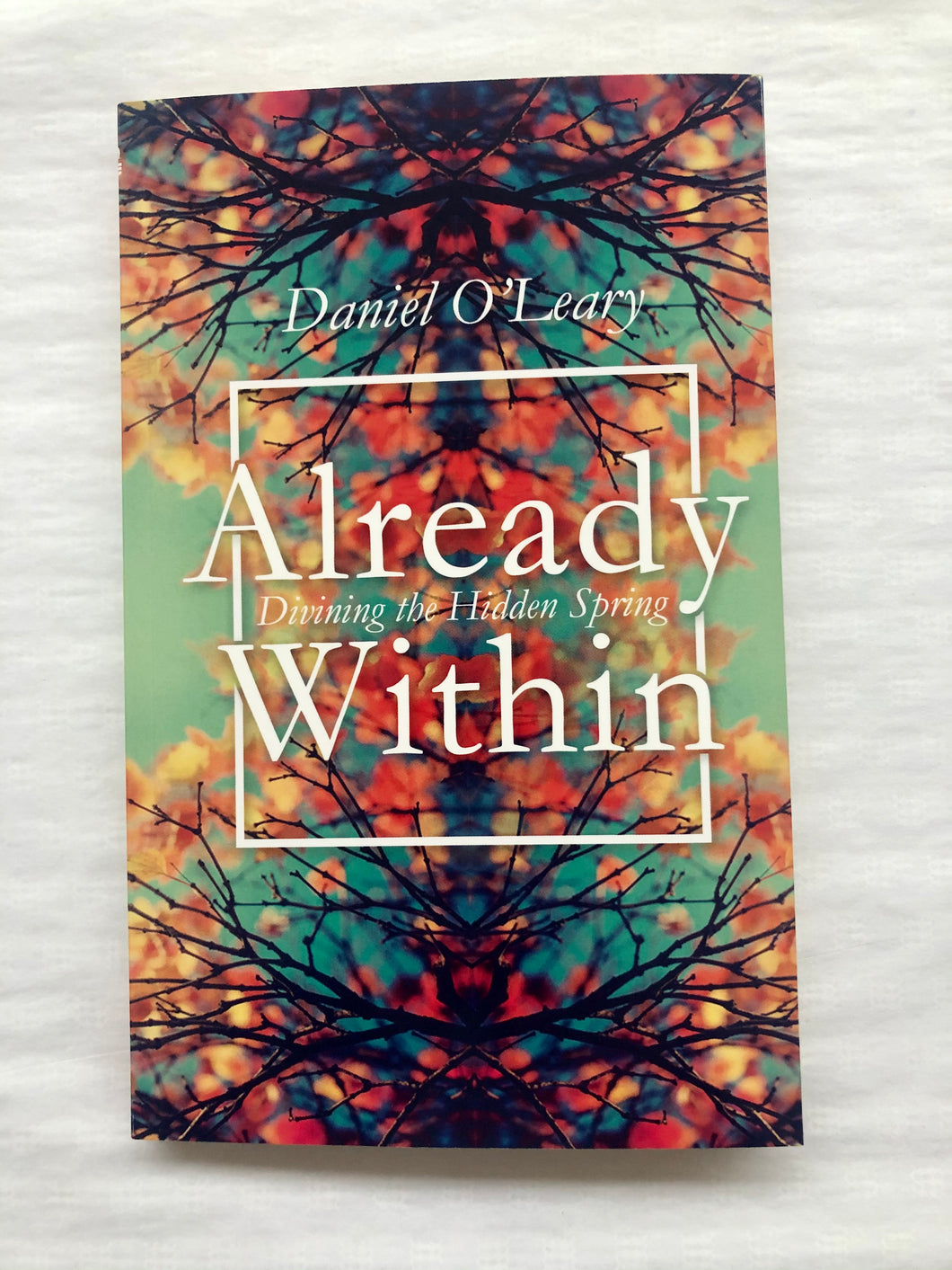 Already Within - Divining The Hidden Spring By Daniel O'Leary