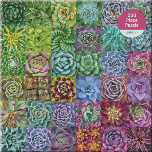 Succulent Spectrum (500 pc puzzle)
