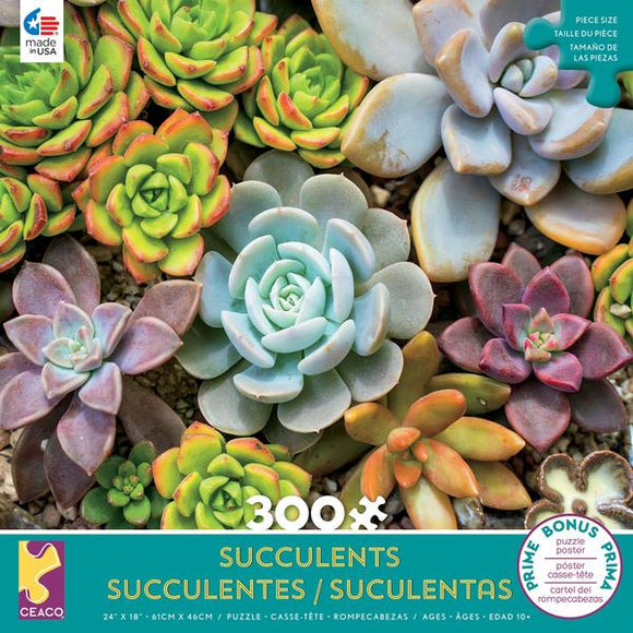 Succulents - Rosette 300 pc Puzzle