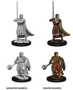 D&D Nolzur's Marvelous Unpainted Miniatures: W8 Human Male Cleric