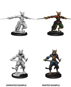 D&D Nolzur's Marvelous Unpainted Miniatures: W9 Tabaxi Female Rogue