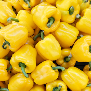 Peppers, Yellow x each