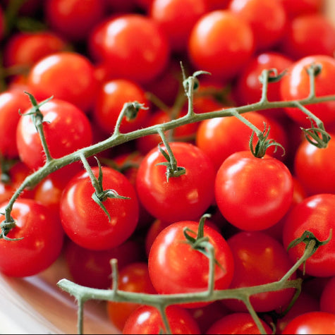 Cherry Tomatoes Truss (300g)
