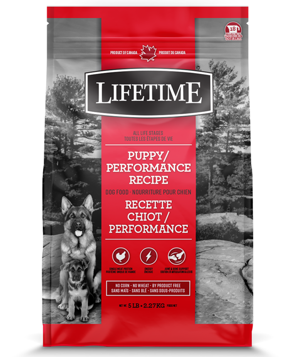 TROUW NUTRITION LIFETIME CHIOT PERFORMANCE POULET/AVOINE 2.27KG