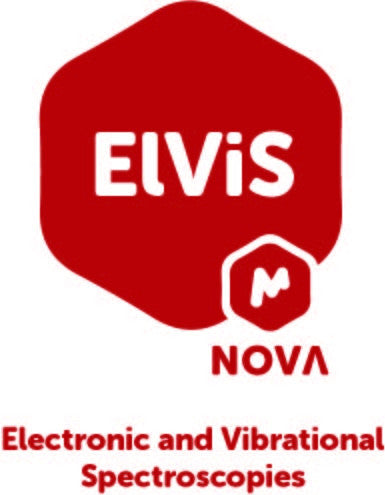Mnova ElViS-Perpetual-Industrial-Single Nominated License