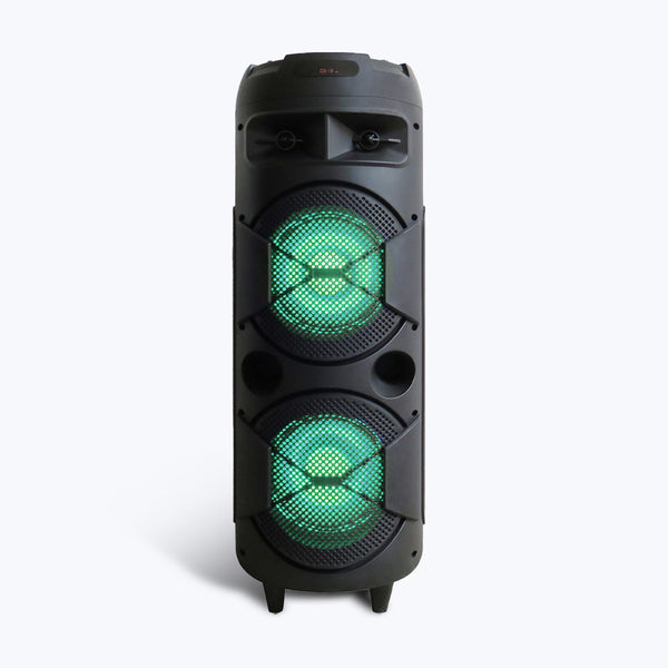 ZEB-450 Moving Monster 2X8L with powerful sound