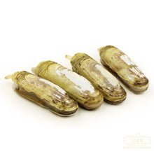 Load image into Gallery viewer, Frozen Cooked Razor Clams 熟蛏子 (240g, 15-20 PCS)