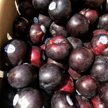 Load image into Gallery viewer, Black Plums 黒布朗(3 LBS)