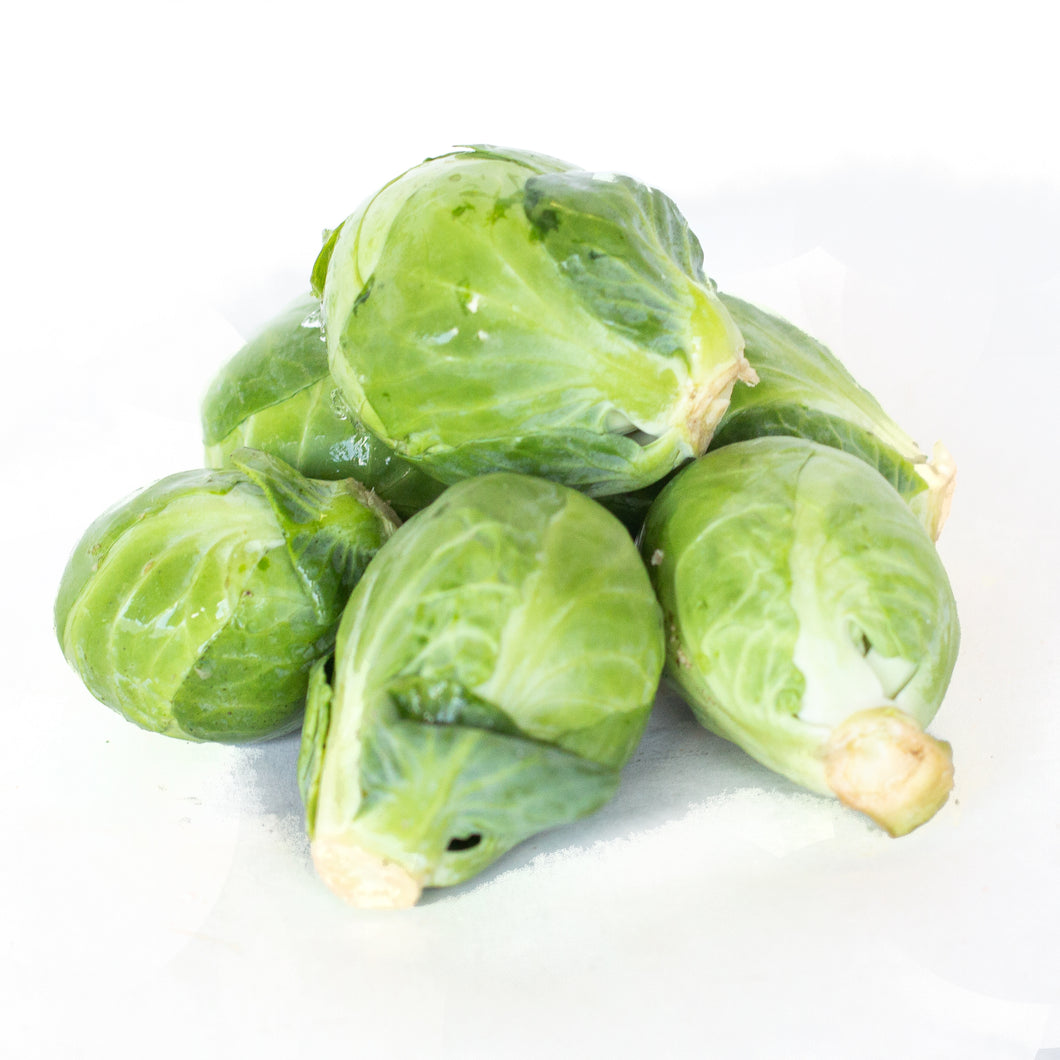 Brussel Sprouts 小包菜牙 (2 LB)