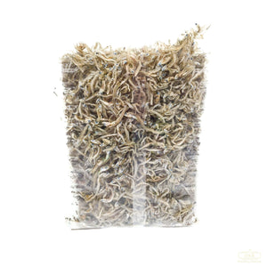 Dried Anchovy (Dashi, S) 小鱼干(小) (6 oz)