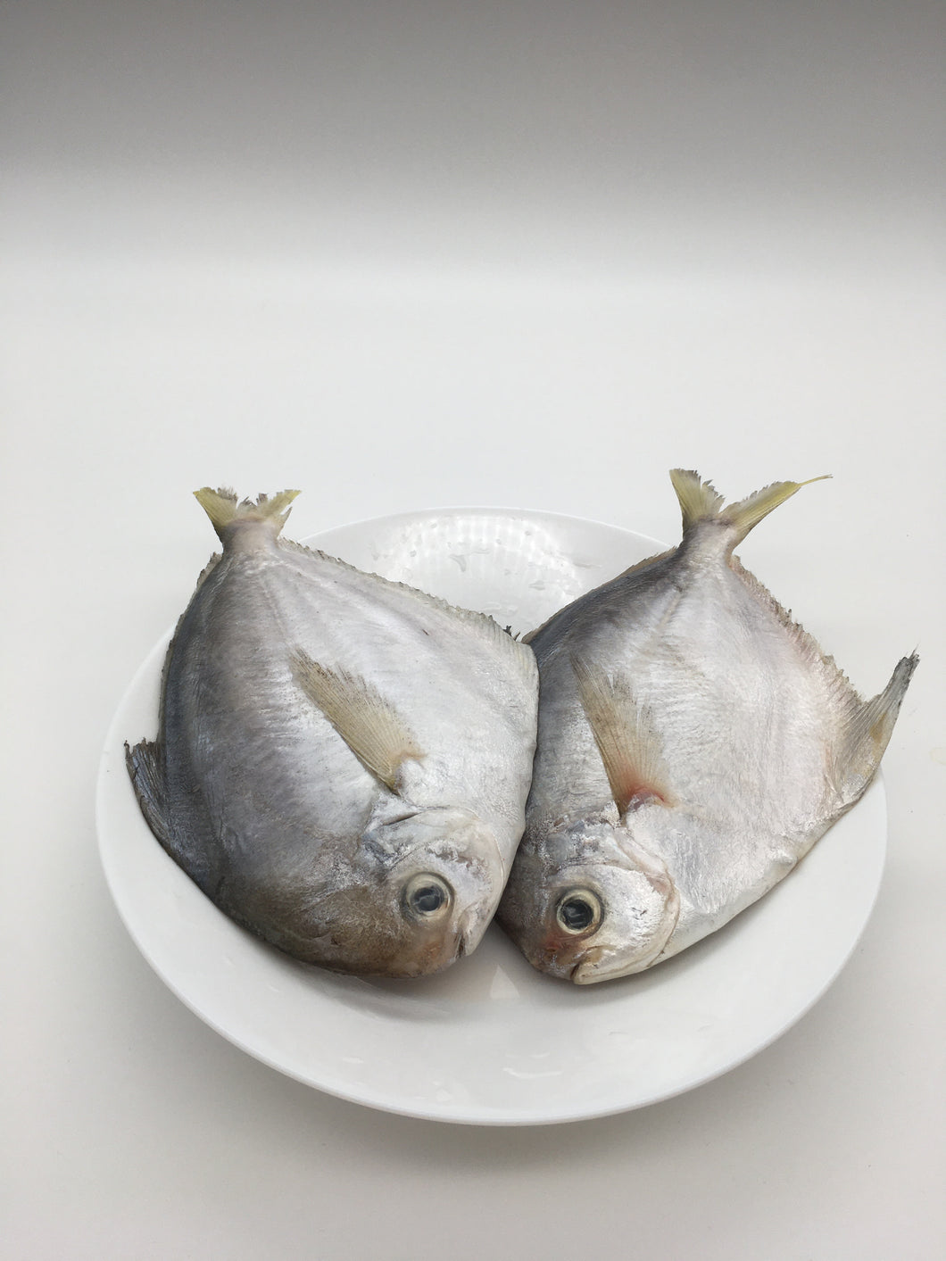 Frozen Medium Butterfish 肉鲳鱼 中(2LB)