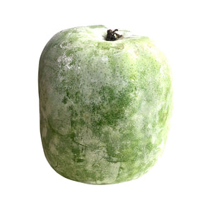 Whole Wintermelon 整个冬瓜(9-10磅)