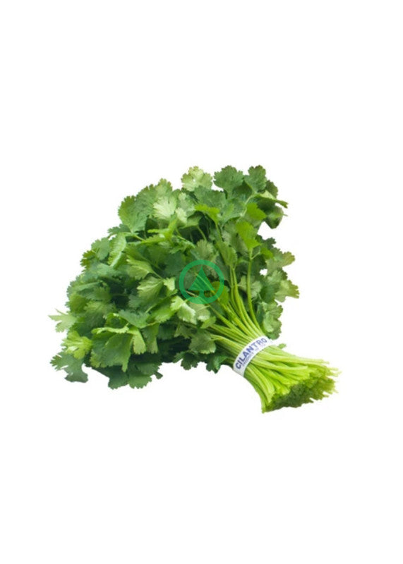 Greens Coriander 1 Piece
