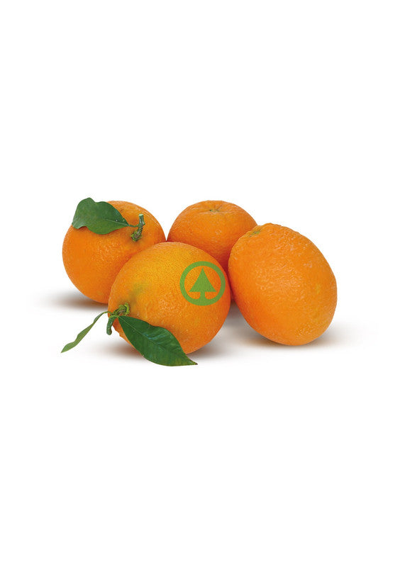 Oranges for Juice ~1Kg - 5Pcs          (€0.79/Kg)