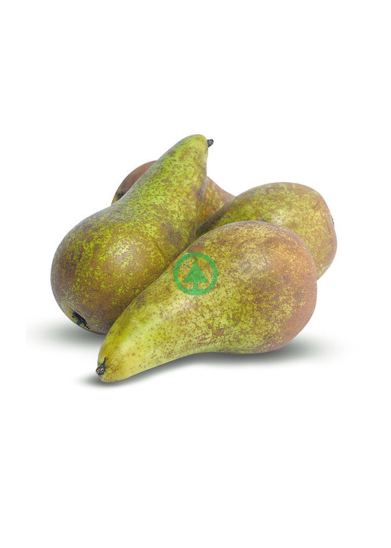 Pears Conference Imported ~500g - 3Pcs  (€1.69/Kg)