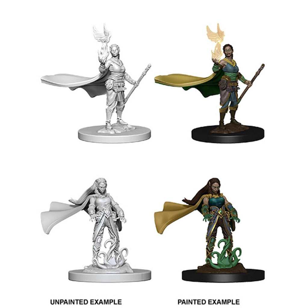 D&D Nolzur's Marvelous Miniatures : Elf Druid