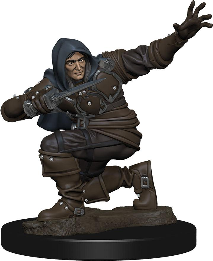 Pathfinder Battles: Premium Painted Figure - W1 Human Rogue Male