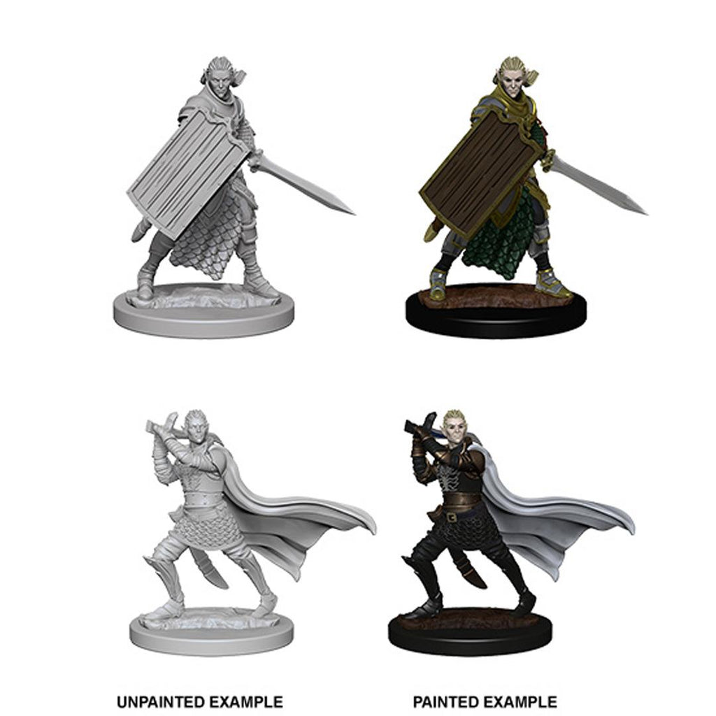 Pathfinder Deep Cuts Unpainted Miniatures: Elf Male Paladin