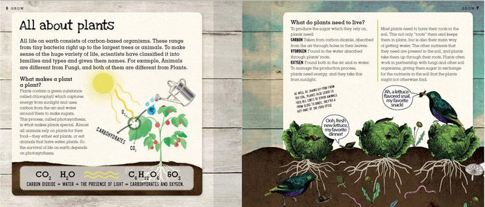 Grow - A Family Guide to Growing Fruits & Vegetables