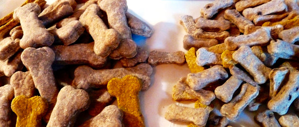 PUMPKIN - DOG BONES COOKIES