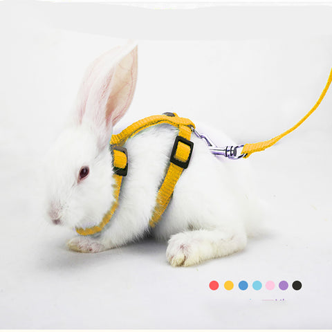 Rabbit & Small Pet Harness Leash for Running/Walking with Safe Belt