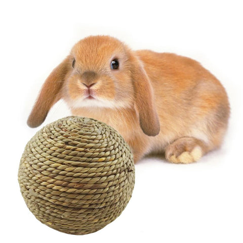 Rabbit & Small Pet Natural Grass Ball Toy (Can be Bitten/Chewed)