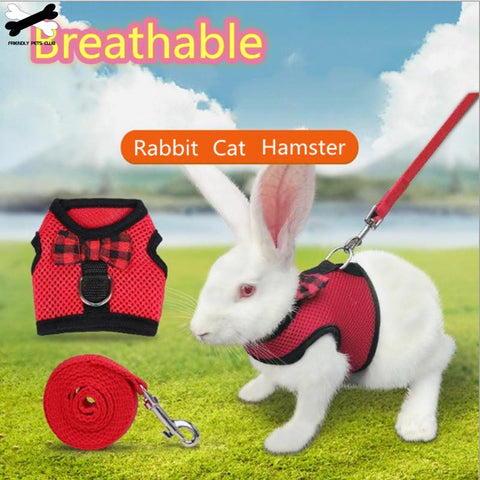 Soft Harness With Leash / Small Animal Vest Lead for Hamster, Rabbit, Bunny