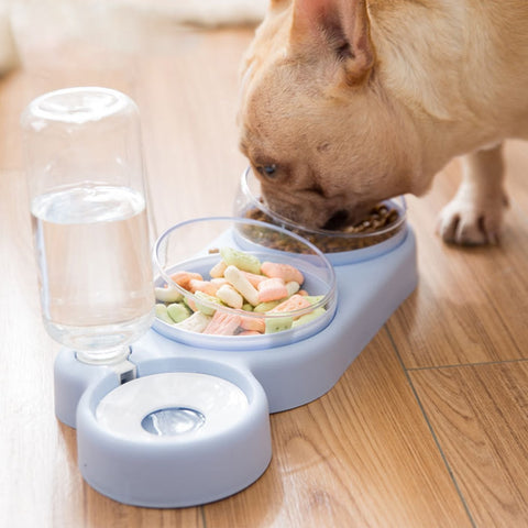 Double Bowls Food/Water Feeder with Auto Water Dispenser for Dog & Cat (Dish Stand Three Bowls)