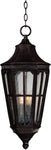 Beacon Hill VX-Outdoor Hanging Lantern