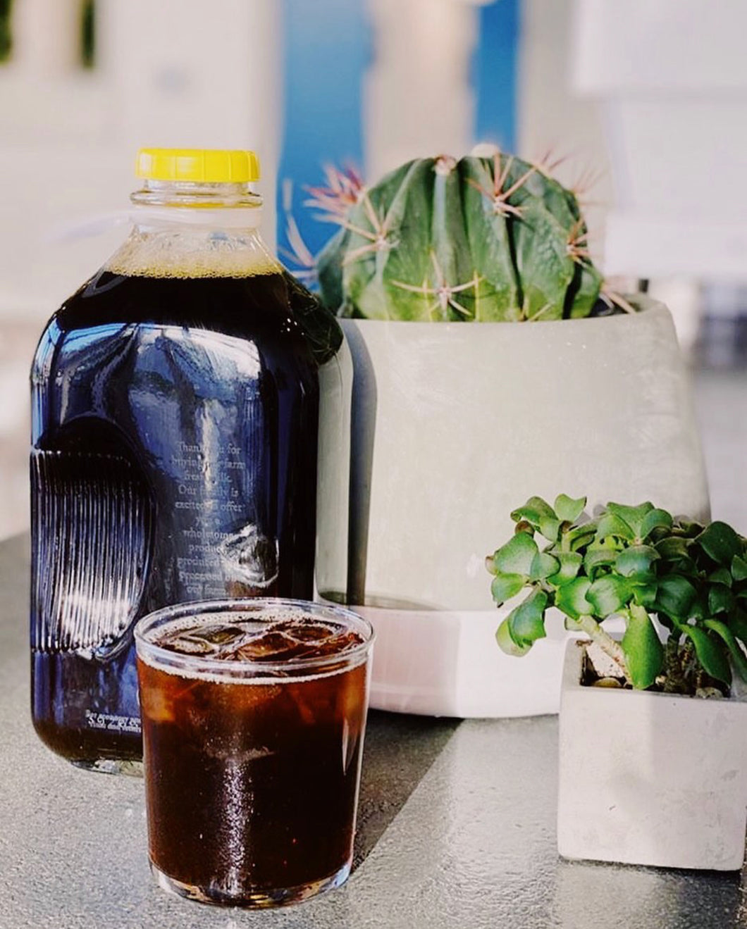 Cold Brew Concentrate // Rally Coffee Co. // LOCAL PICK-UP ONLY