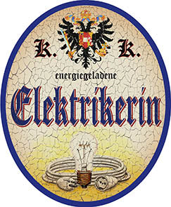 Elektrikerin