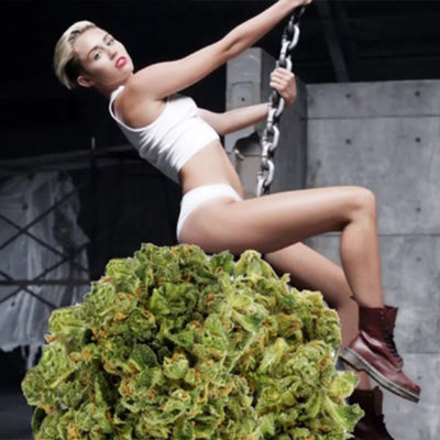Weed Rather Not Have You Back, Miley
