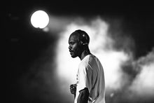 Load image into Gallery viewer, Frank Ocean, by Aysia Marotta