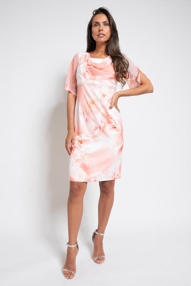 The Rose Dress by Christopher Wren