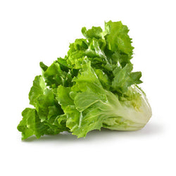 Escarole 1 Head