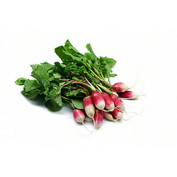 French Breakfast Radish 1 bunch