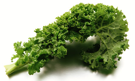 Food Pantry Donation: Curly Kale 1 bunch