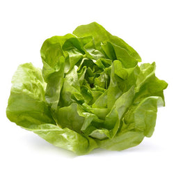 Butterhead Lettuce 1 head