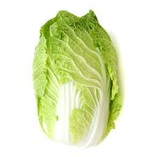Napa Cabbage 1 head Certified Organic